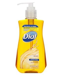 Dial Foaming Hand Soap