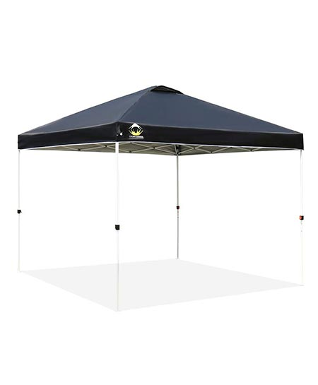 3. CROWN SHADES Patented 10ft x 10ft Outdoor Pop up Portable Shade